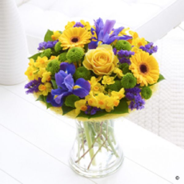Spring Brights Perfect Gift